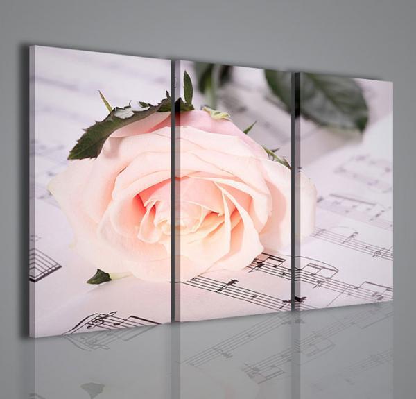 Quadri Moderni-Quadri di Fiori e Piante-Melody White Rose | QUADRI ...