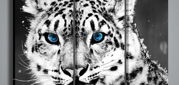 Quadri Moderni Quadri Di Animali Winter Leopard Quadri Moderni Point