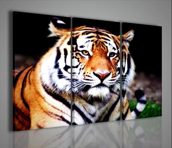 Quadri Moderni Quadri Di Animali Tigre I Quadri Moderni Point