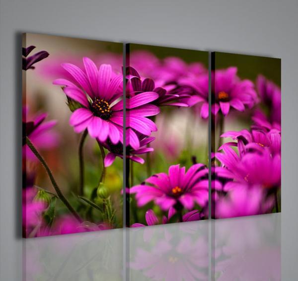 Quadri Moderni-Quadri di Fiori e Piante-Violet Flower III | QUADRI ...